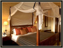 Vic Falls Safari Lodge Zimbabwe